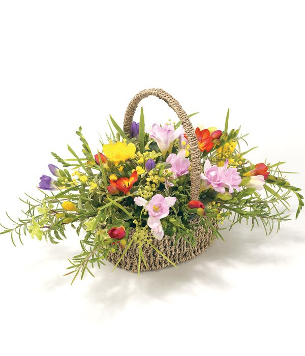 Mixed Fresia Basket